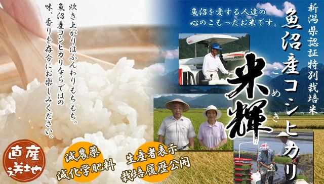 特別栽培米魚沼産コシヒカリ米輝