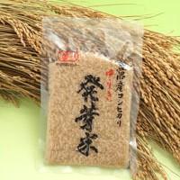 item_hatuga01