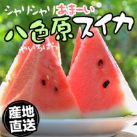 item_ysuika_nomal