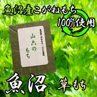 草モチアイコン